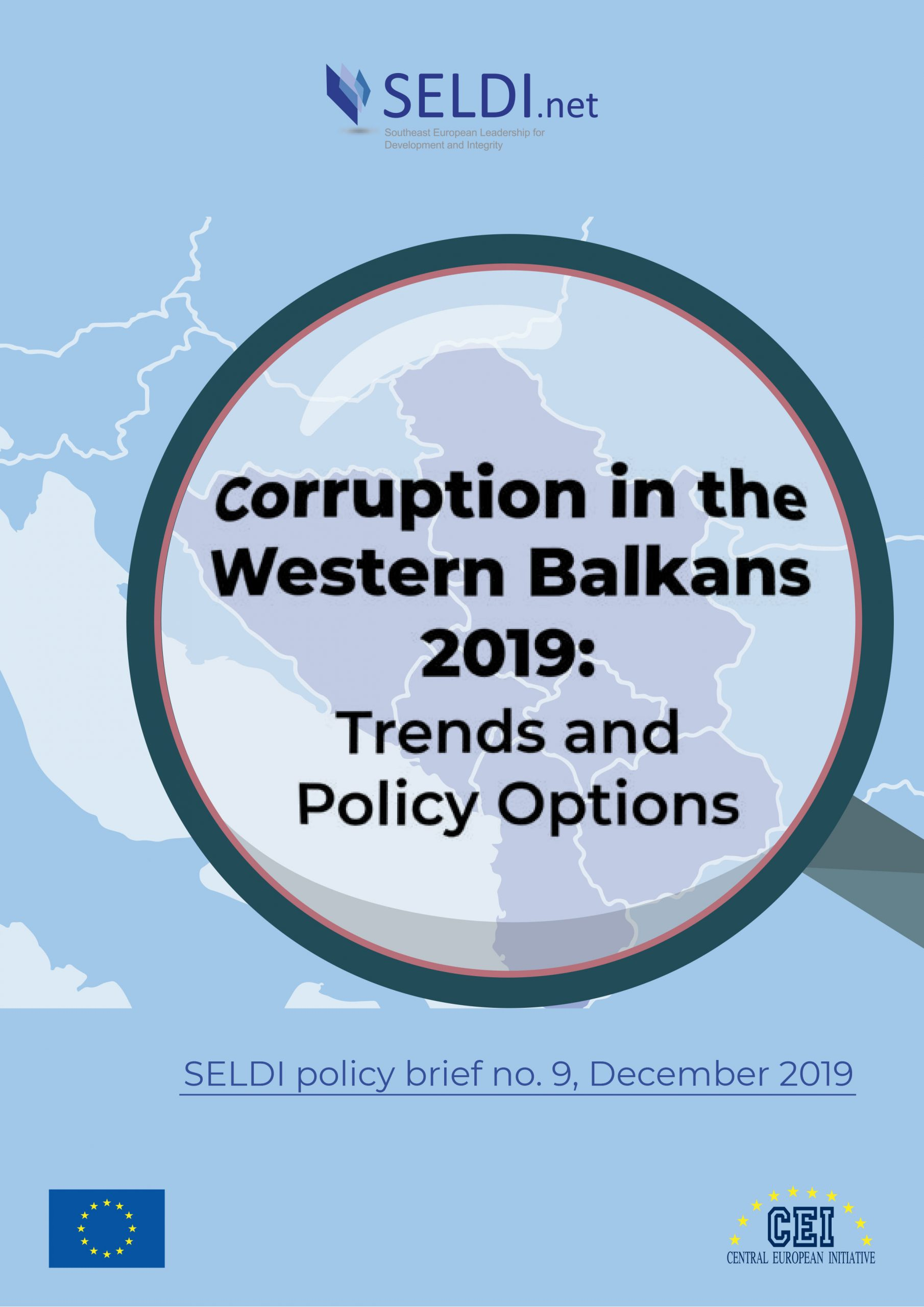 Seldi PolicyBrief 01 scaled