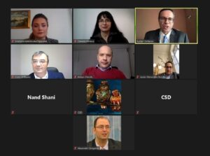 The panelists and discussants at the webinar